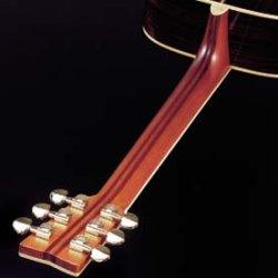guitar_neck_220.jpg
