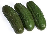 pickles.bmp