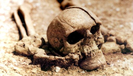 skull.htm